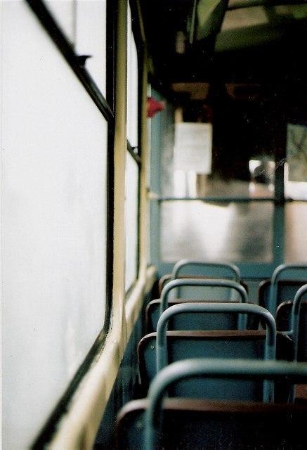 Пчела в автобусе или размышления о судьбе