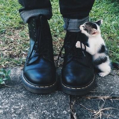 кисо и ботинок