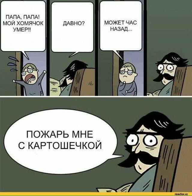 homyak