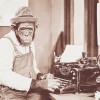 Работа по написанию отзывов в интернете – мой опыт и мнение