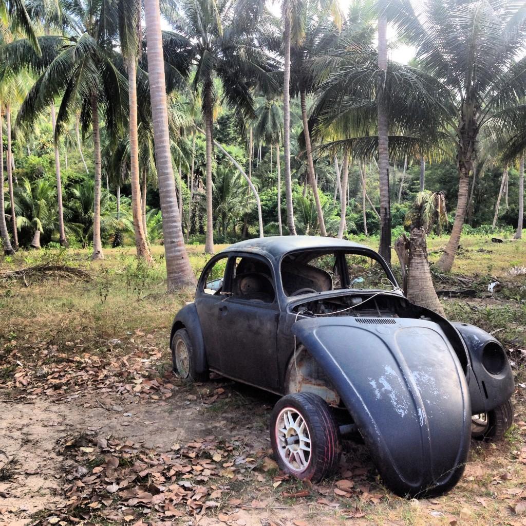 разбитый жук в джунглях