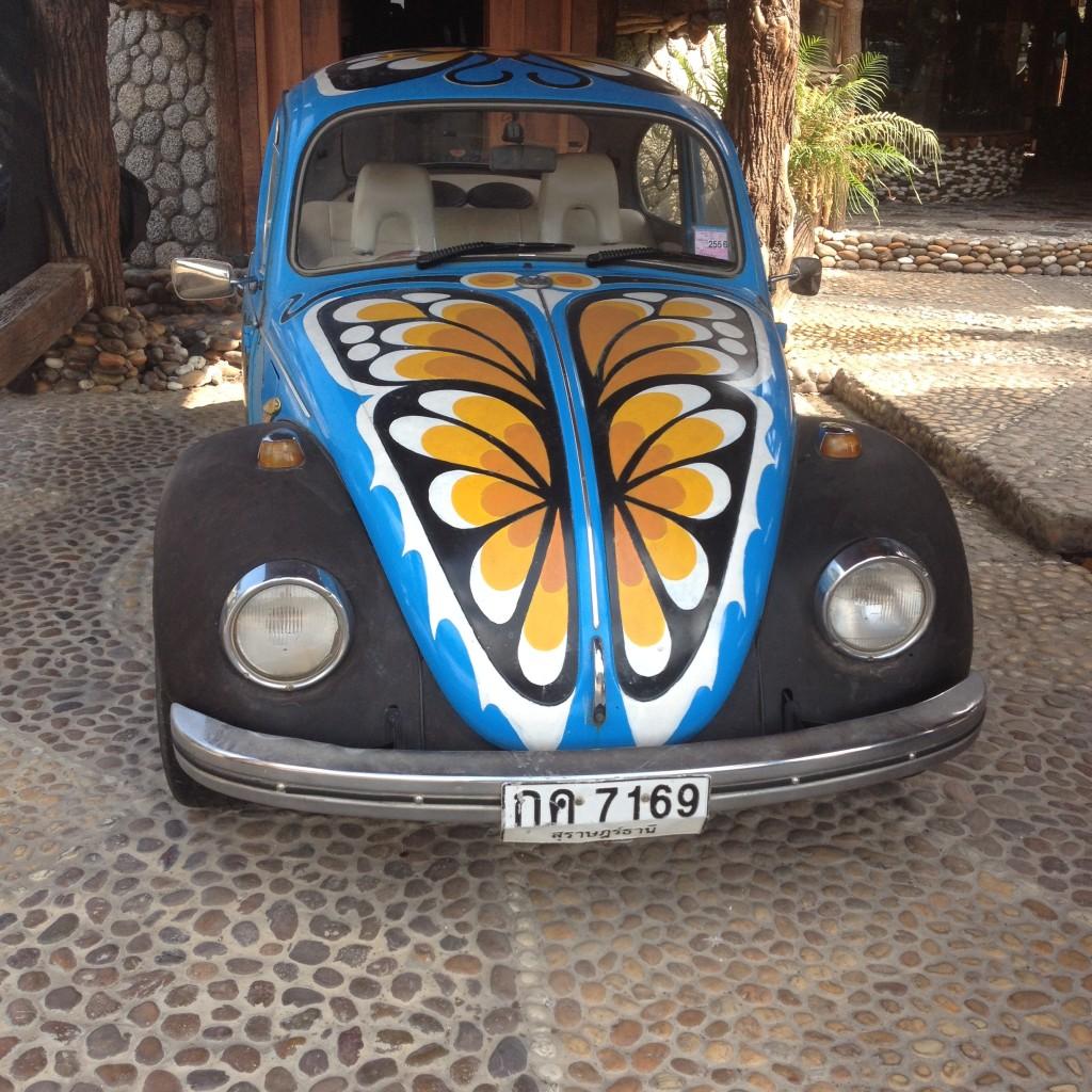 тайский жук