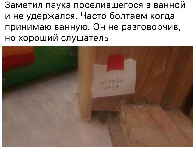 не в тему, но забавно)