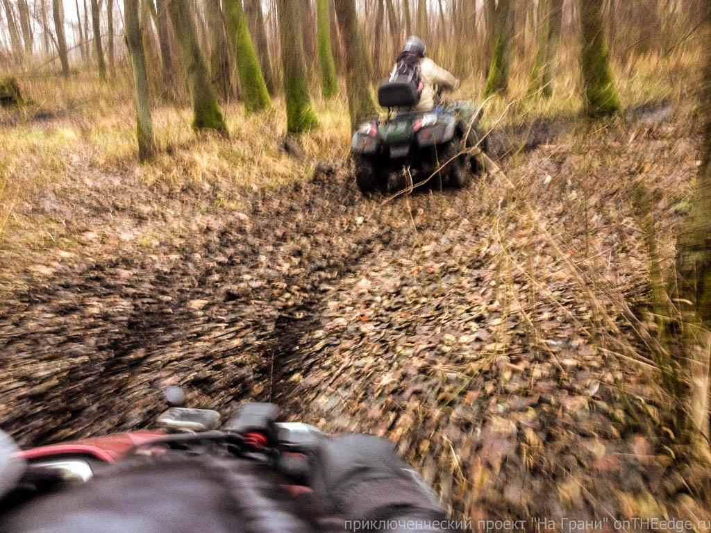 квадроциклы в осеннем лесу