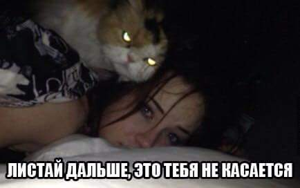 котинька любит женщин