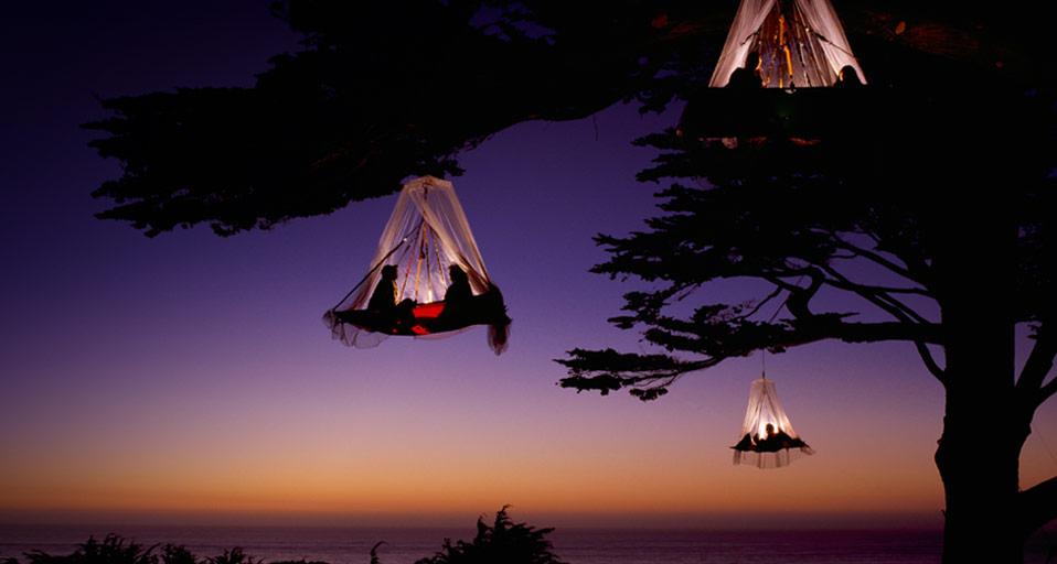 люди в палатках на дереве