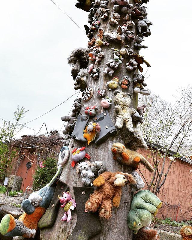 плюшевое дерево ужаса
