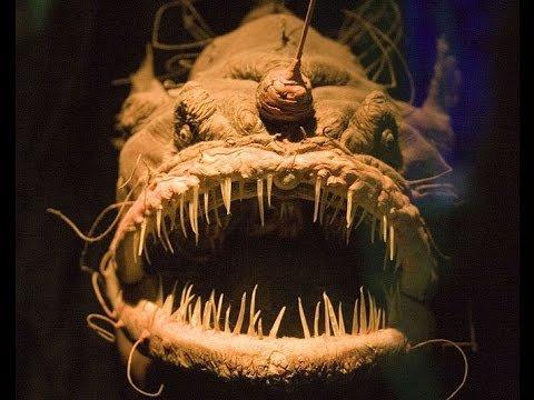 марианское чудовище