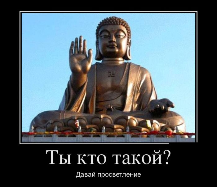 демотиватор будда