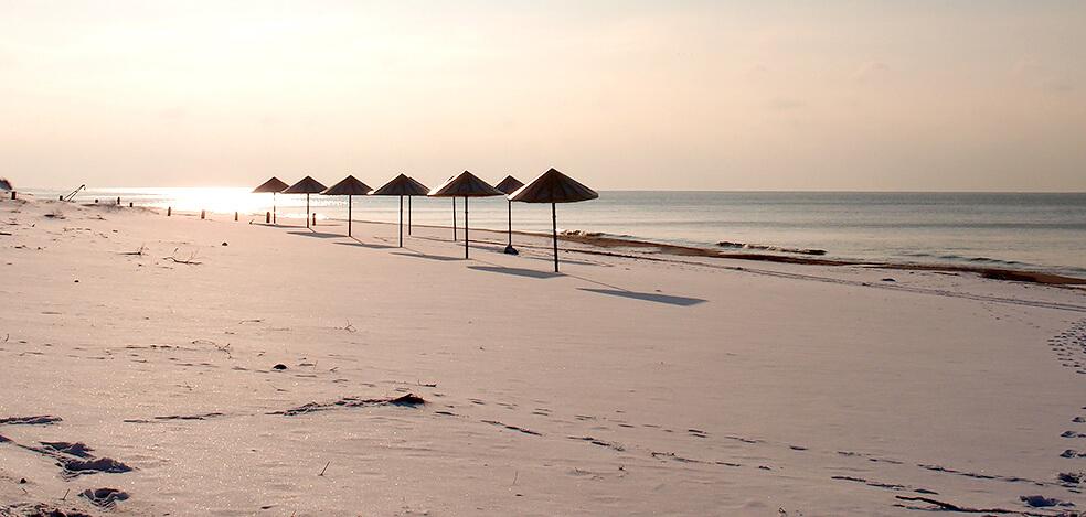 пляж в янтарном на балтийском море