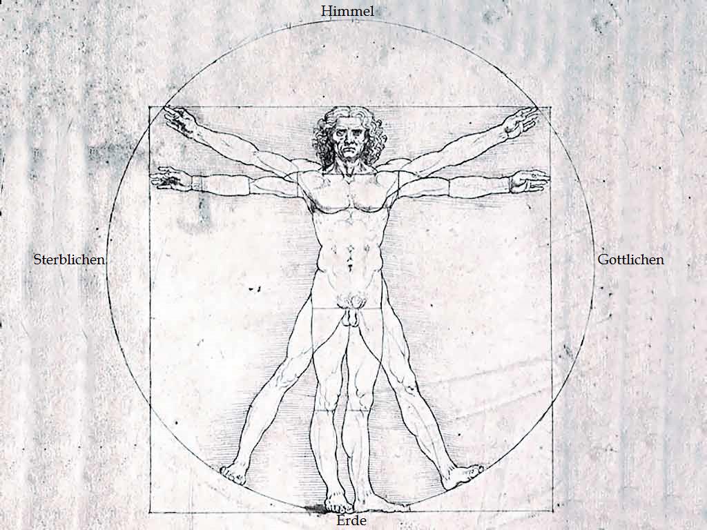 леонардо да винчи человек в круге