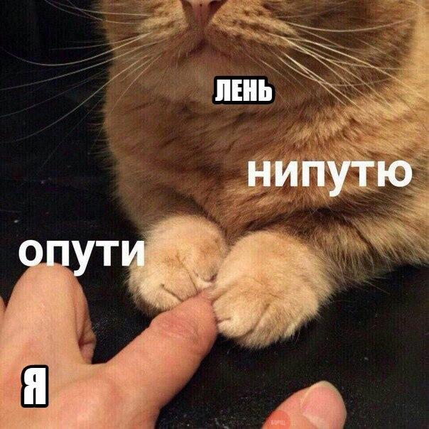 Опути