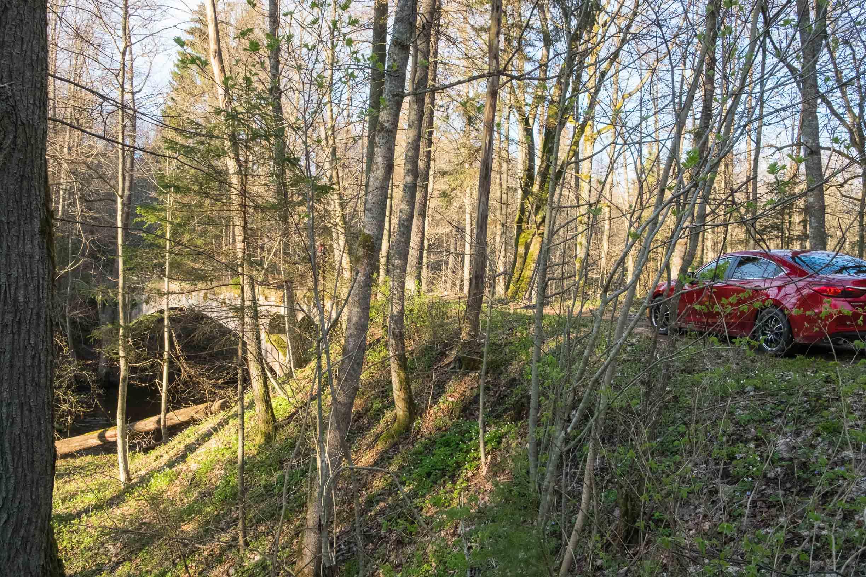 мост через реку красная в роминтенской пуще