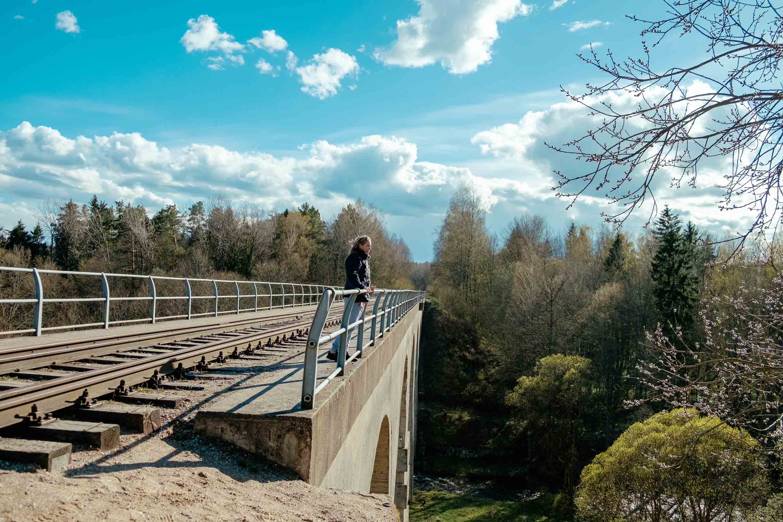 мост в токаревке