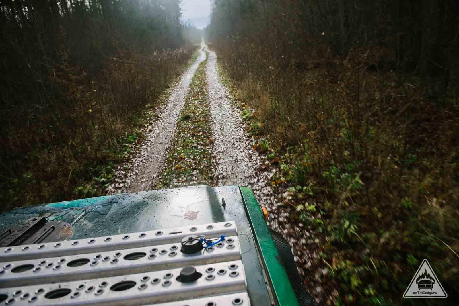 офф роад в лесу
