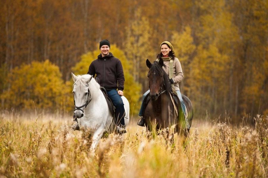 катаемся на лошадях