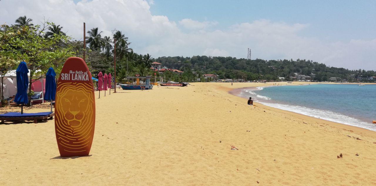Зимовка и отдых на Шри Ланке: цены на аренду, еду, визу и прочие расходы на двоих