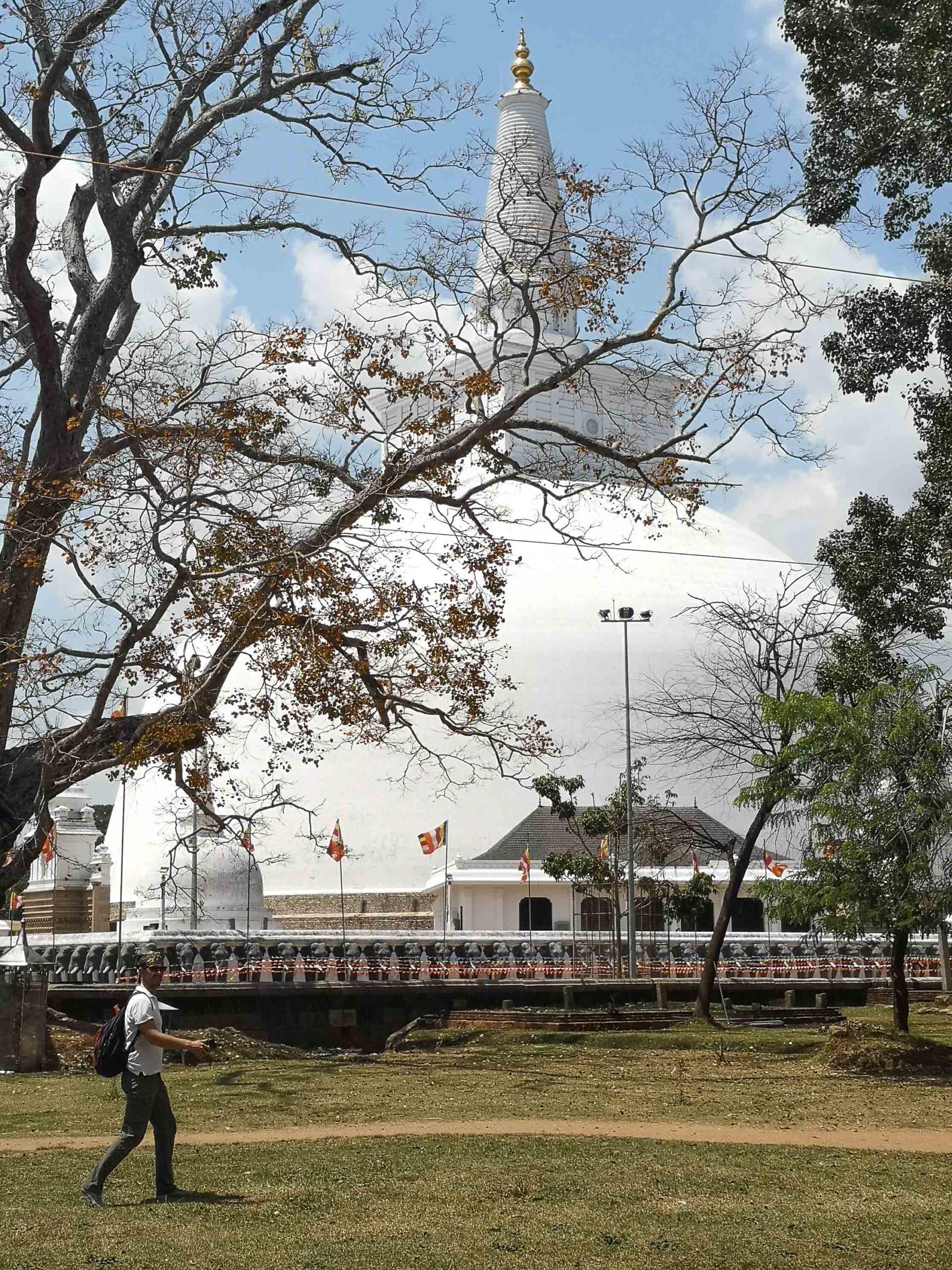 анурадхапура дагоба фото